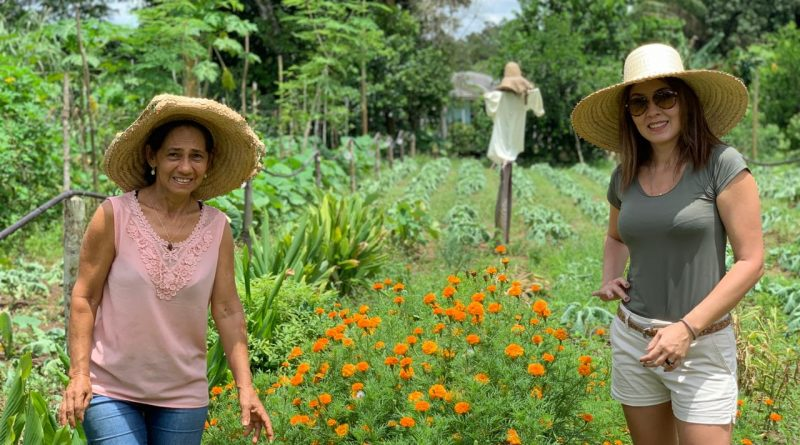 Alimentos orgânicos ganham força em Manaus e eu ando louca por eles!